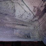 IMG00179-20111101-1645